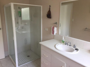 guests shower, basin & full bath